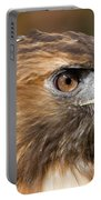 Red-tailed Hawk Portrait Portable Battery Charger