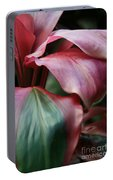 Red Ti - Cordyline Terminalis Portable Battery Charger