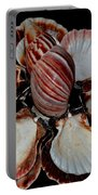 Red-toned Seashells Portable Battery Charger
