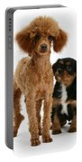 Red Toy Poodle And Cavalier King Portable Battery Charger