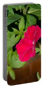 Red Velvet Petunia Portable Battery Charger
