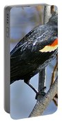 Redwinged Blackbird I Portable Battery Charger