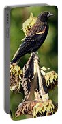 Redwinged Blackbird II Portable Battery Charger