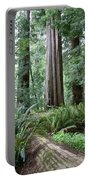 Redwood National Park, California Portable Battery Charger