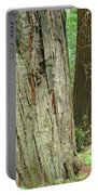 Redwood Trees Art Prints Big California Redwoods Portable Battery Charger