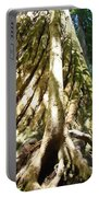 Redwood Trees Forest Art Prints Redwoods Portable Battery Charger