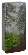 Redwoods Rising In Fog Portable Battery Charger