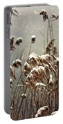 Reed In Snow Portable Battery Charger by Joana Kruse