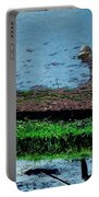 Reflecting On Rice Portable Battery Charger