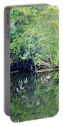 Reflection On The North Fork River Portable Battery Charger