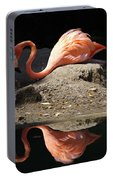 Reflections Of A Flamingo Portable Battery Charger