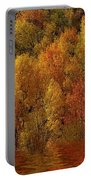 Reflections Of Autumn Portable Battery Charger