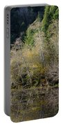 Reflections On Marshall Pond Portable Battery Charger