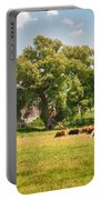 Reive Blvd Barn 15059c Portable Battery Charger