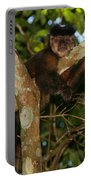 Relaxed - Brown Capuchin Portable Battery Charger