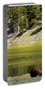 Resting Buffalo By Pond Portable Battery Charger