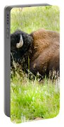 Resting Buffalo Portable Battery Charger