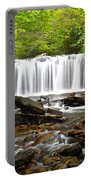 Ricketts Glen Waterfall Oneida Portable Battery Charger
