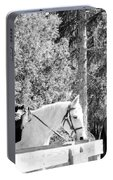 Riding Soldiers B And W IIi Portable Battery Charger