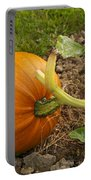 Ripe Pumpkin Portable Battery Charger