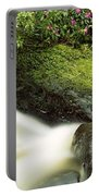 River Flowing Through A Forest, Torc Portable Battery Charger