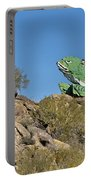 Road Frog Portable Battery Charger