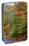 Road Through Autumn Woods Portable Battery Charger