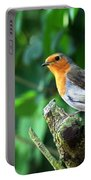 Robin 1 Portable Battery Charger
