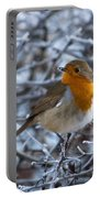 Robin On A Frosty Morning Portable Battery Charger