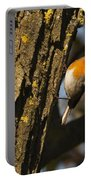 Robin On Tree Portable Battery Charger