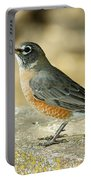 Robins Portable Battery Charger