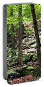 Rocky Forest Of Chatfield Portable Battery Charger