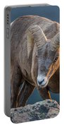 Rocky Mountain Big Horn Ram Portable Battery Charger
