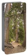 Rocky Mountain Forest Walk Portable Battery Charger