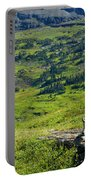 Rocky Mountain Goat Glacier National Park Portable Battery Charger