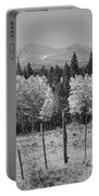 Rocky Mountain High Country Autumn Fall Foliage Scenic View Bw Portable Battery Charger