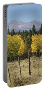 Rocky Mountain High Country Autumn Fall Foliage Scenic View Portable Battery Charger