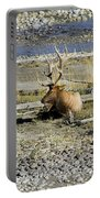 Rocky Mountains Elk Portable Battery Charger