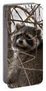 Rocky Raccoon Portable Battery Charger