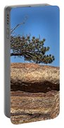 Rocky Tree Portable Battery Charger