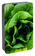 Romaine Portable Battery Charger