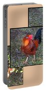 Rooster Red Portable Battery Charger