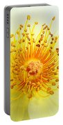 Rosa Golden Wings Portable Battery Charger