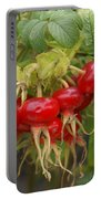 Rosehips Portable Battery Charger