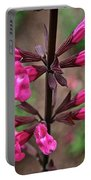 Rosey Leaf Sage Portable Battery Charger