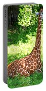 Rothschild Giraffe Portable Battery Charger