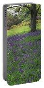 Rowallane Garden, Co Down, Ireland Wild Portable Battery Charger