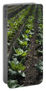 Rows Of Cabbage Portable Battery Charger