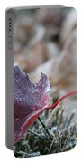 Ruby Frost Portable Battery Charger