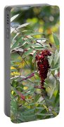 Ruby Sumac Portable Battery Charger